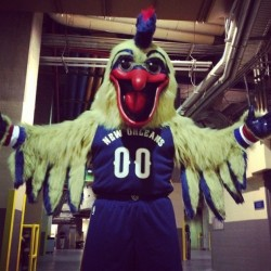 20 Best Sports Mascots of All Time