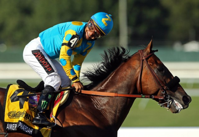 Breeders Cup Betting, Handicapping & Odds