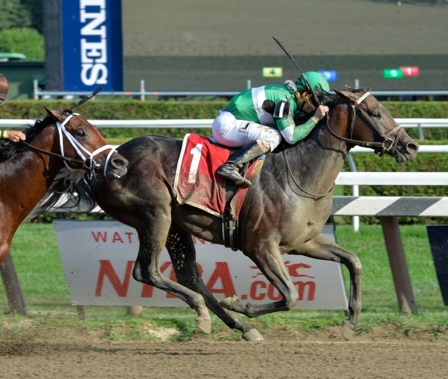 Saratoga S Best Bets For The Preakness - image 4
