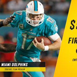 Miami Dolphins 2016-17 NFL Team Preview