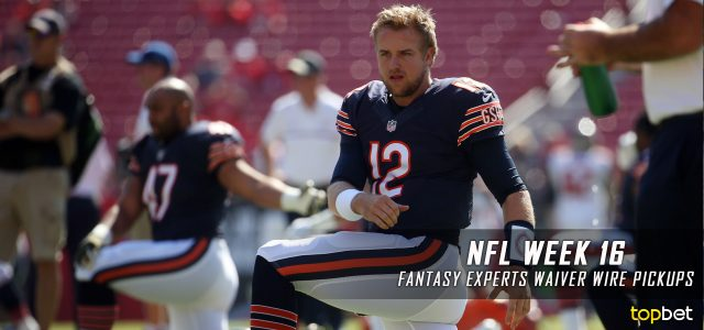 Fantasy Football Expert Guide Pick Ups for Week 16 of the 2016-17 NFL Season