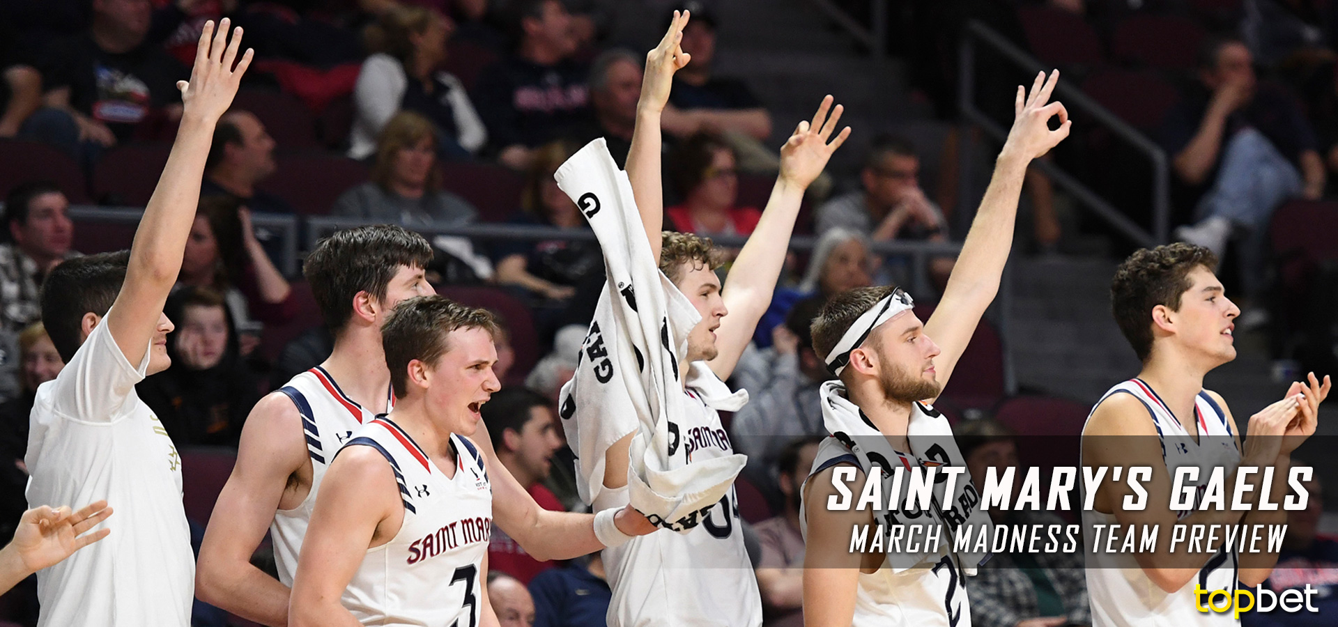Saint Mary's – March Madness Team Predictions and Odds 2017