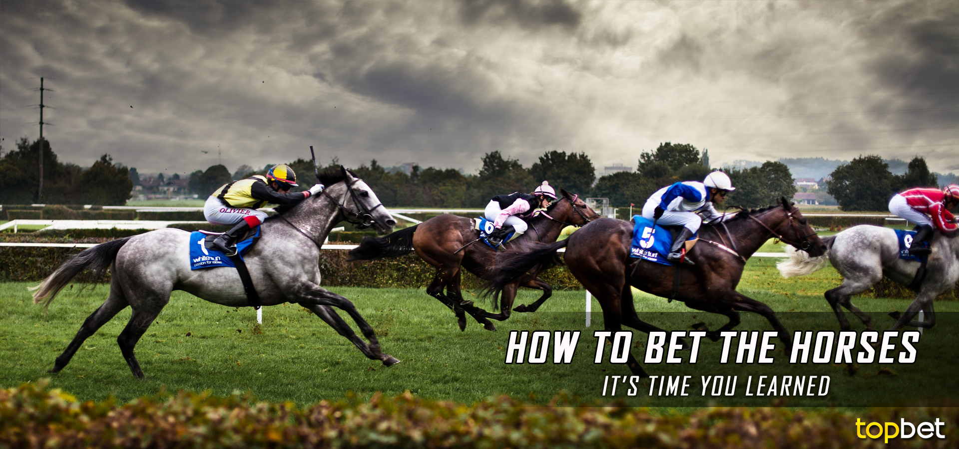 How To Bet On Horses And Win