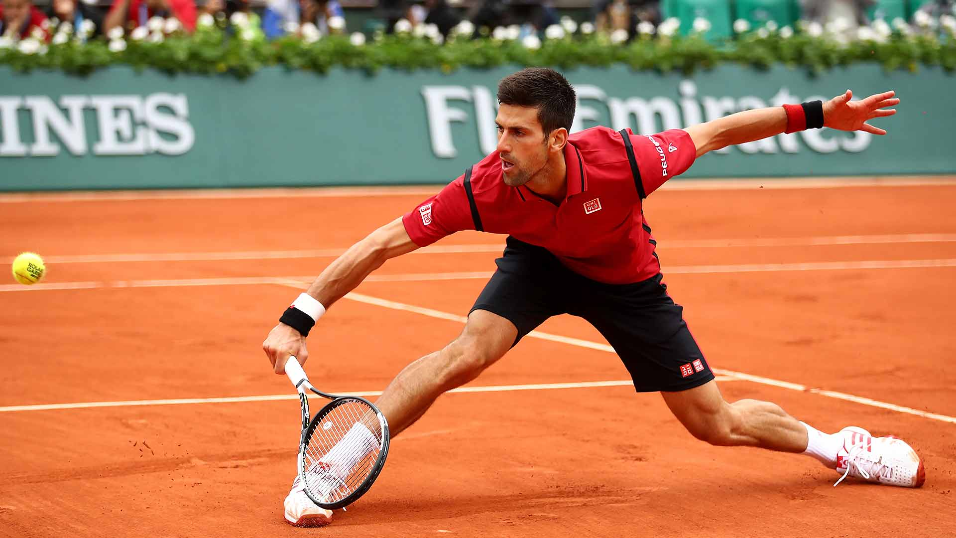 Bonus Question: What round will Novak Djokovic advance to?