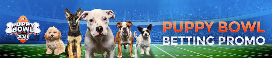 Puppy-Bowl-Betting-Promo 2020