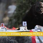 Animal Super Bowl Predictions and Picks 2021