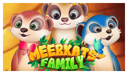 Meerkats Family